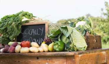 Organics Reduces Health Risks